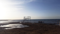 青海湖湖畔