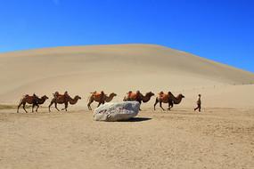 鸣沙山沙漠驼队