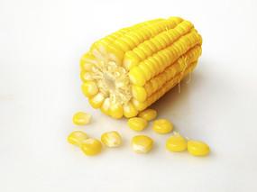 白底玉米素材