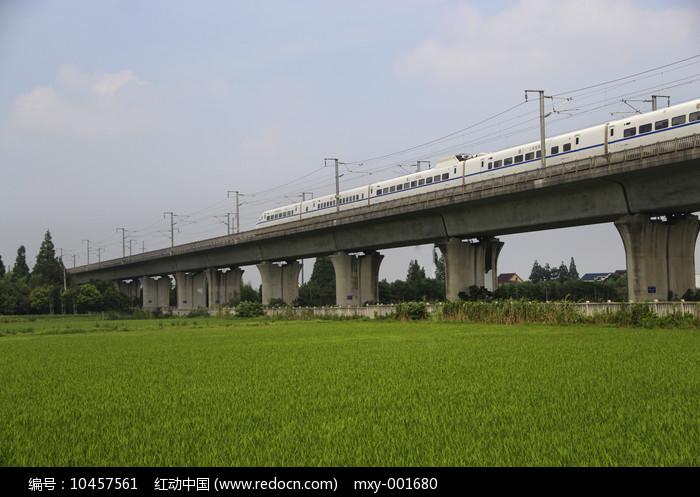 高架列车图片