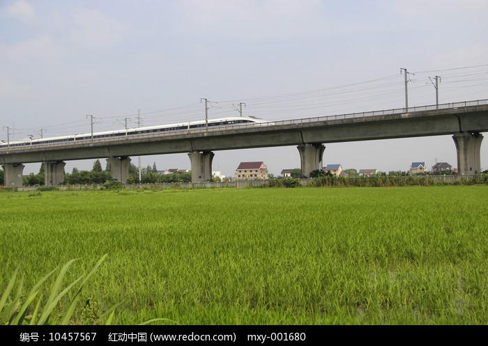 田野稻田高铁飞驰图片