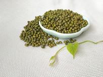 绿叶绿豆图