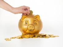 将金币投入存钱罐中