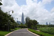 深圳湾公园绿道