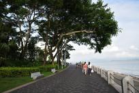 深圳湾海滨公园绿道