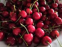 红色的新鲜的樱桃