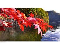 红叶谷湖水一角