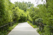 济南泉城公园风景