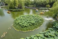 济南泉城公园美景