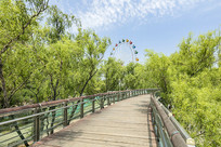 泉城公园景观