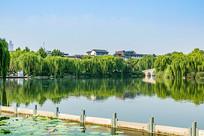 大明湖优美风景