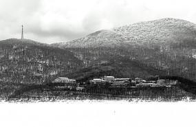 雪后村落黑白图