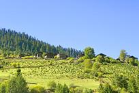 黑水县三达古村之中达古藏寨