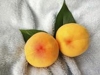 拍摄绿叶黄桃