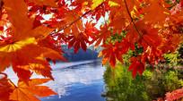 红叶谷湖水摄影