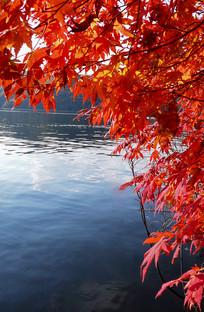 红叶湖水拍摄