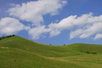 蓝天白云下的绿色草地