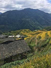 山上的房屋和梯田