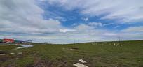 草原上的牧场