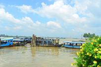 越南九龙江码头上停泊的游船