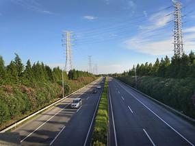 高速路绿化