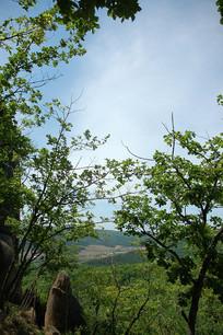 三道关国家森林公园景色