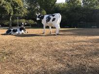 草坪上的奶牛雕塑