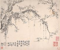 清代金农梅花图