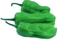 三只新鲜绿色青椒