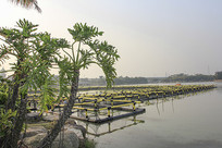 水上养殖场