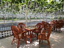 葡萄长廊休闲茶座
