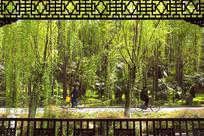 包河公园长亭外的园林