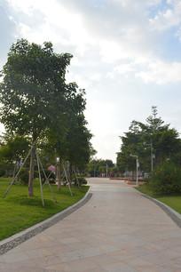 公园绿化道路