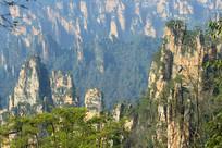 湖南武陵源砂岩峰林自然风景