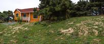 松樹林里的小房子