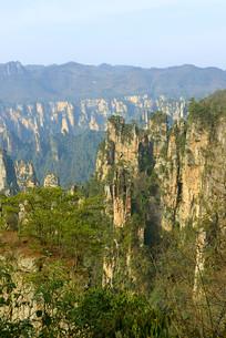 张家界武陵源砂岩峰林自然风光