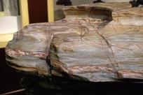 大化石特写