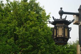 济南大明湖公园景观灯