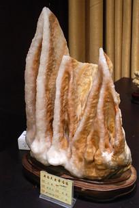 济南天然奇石馆之石林