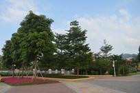 广州儿童公园广场