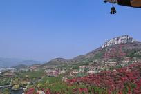 万叶塔上观红叶谷
