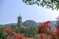 济南红叶谷万叶塔