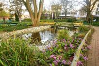 德国哈默尔恩中心公园池塘水景