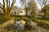 哈默尔恩城市中心公园池塘