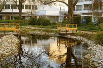 哈默尔恩城市中心公园池塘水景