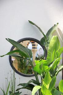 芭蕉叶圆窗户园艺