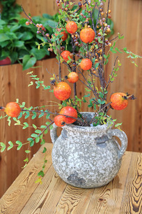 红石榴花盆