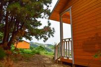 树林旁边的小木屋
