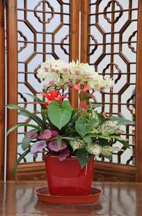 中国风花盆