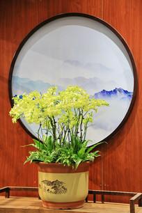 中国风园艺盆景